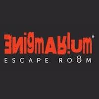 Escape Room Enigmarium logo image