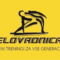 Telovadnica, športne dejavnosti, David Zadravec s.p. logo image